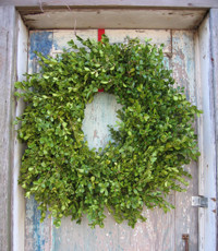 Traditional Wreaths And Garlands by Dragonfly Farm