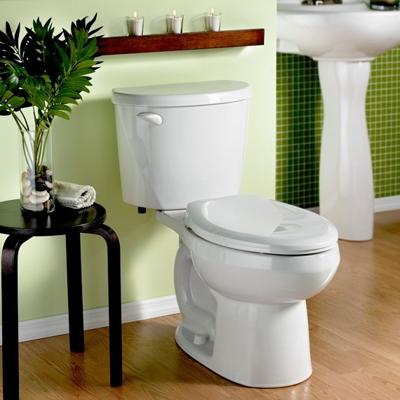 American Standard Evolution 2 Elongated Toilet Toilets