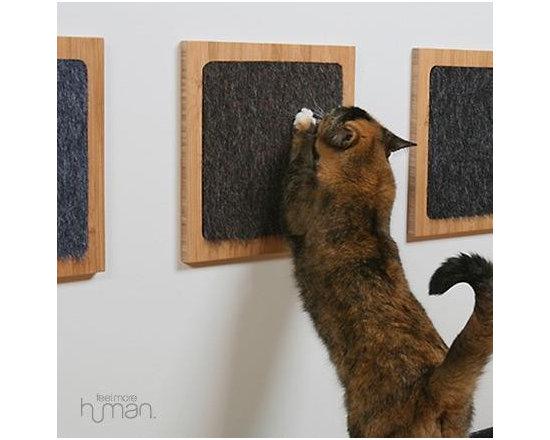 Square Cat Habitat -