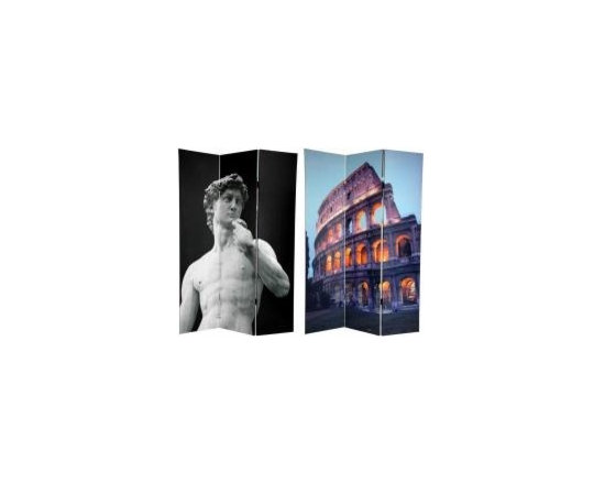 Functional Art/Photography Printed on a 6ft Folding Screen - 6ft tall three panel folding screen divider.   On the front is a tasteful black & white close-up of Michelangelo's David. The back features a photo of the east wall of the Roman Coliseum at dusk