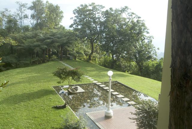 Diego Perez modern-landscape