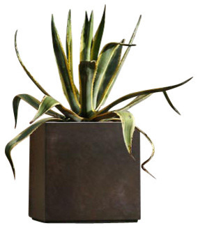 Cube Pot modern-outdoor-pots-and-planters