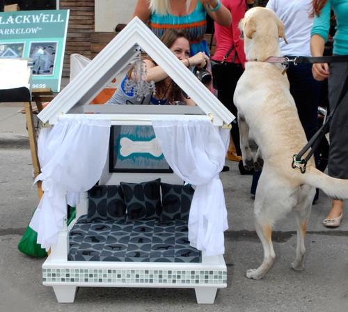 casa para perro blanca con cortinas y cojines
