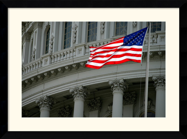 Capitol Flag Framed Print by Andy Magee traditional-prints-and-posters