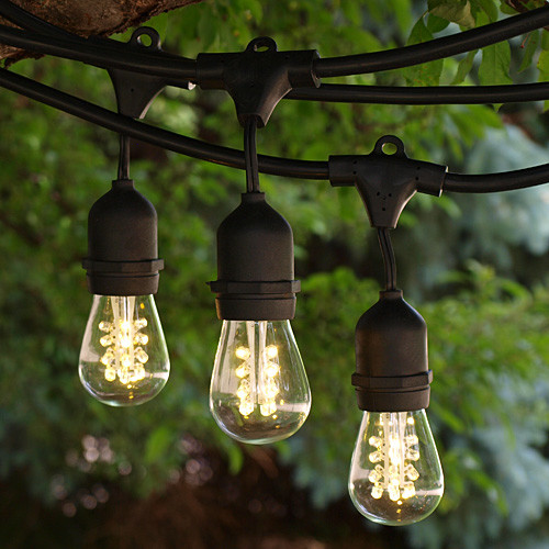 Outdoor Led Bulb String Lights : 100 Black Commercial Grade Medium String Lights with Suspenders and LED S14 Pre - Contemporary ...