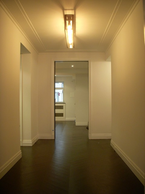 Apartment contemporary-hall
