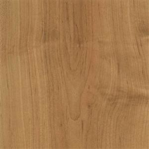LUXURY VINYL PLANKS contemporary-vinyl-flooring