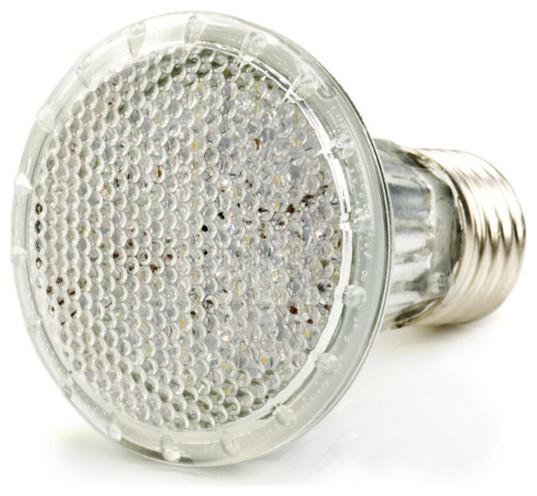 PAR20 LED Bulb, 36 LED contemporary-led-bulbs