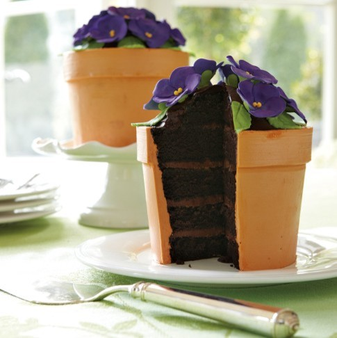 Perfect Endings Blooming Flower Pot Cake eclectic-pantry-cabinets