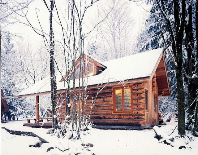 Guest Cabin contemporary