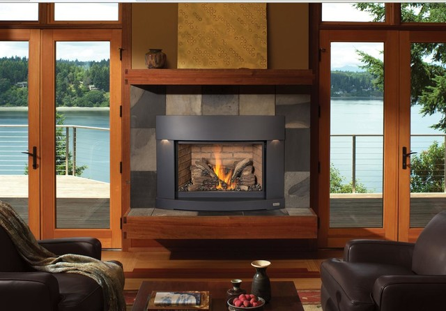 Avalon 33 DVI Basic GreenSmart Gas Insert Modern Indoor Fireplaces Seat