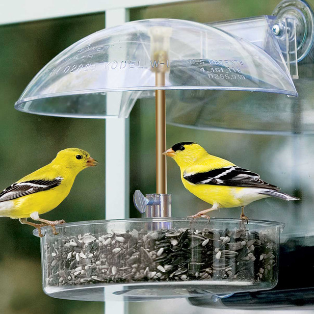 Winner Window Bird Feeder Contemporary Bird Feeders
