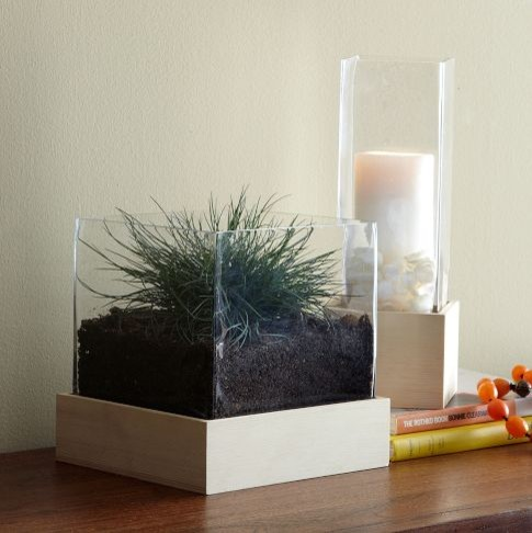 Wood + Glass Hurricane modern-candles-and-candle-holders