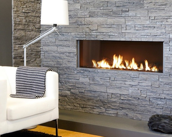 Modore 140 from Element4 Fireplaces -