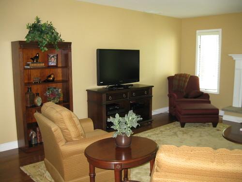 Need Help With Livingroom Wall Color