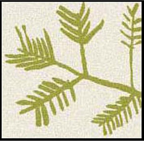 Frond Design Doormat contemporary-outdoor-rugs