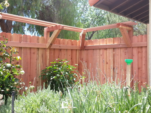 Board On Board Redwood Fence With A Trellis For Wisteria