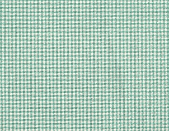 Small Neckroll Pillow Gingham Check Pool Blue-Green traditional-decorative-pillows