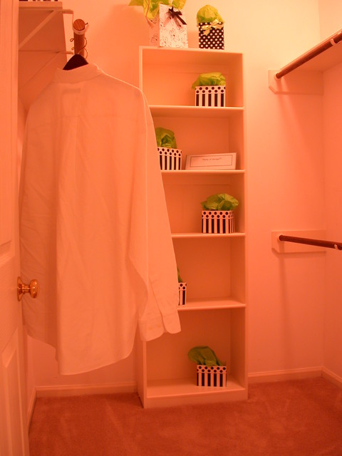 The Closet Case:  Elementary closet staging techniques!