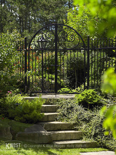 wrought iron like this might be the right fence solution for your house