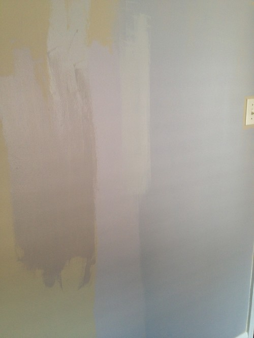 Cannot Find A Sherwin Williams Gray That Looks Gray