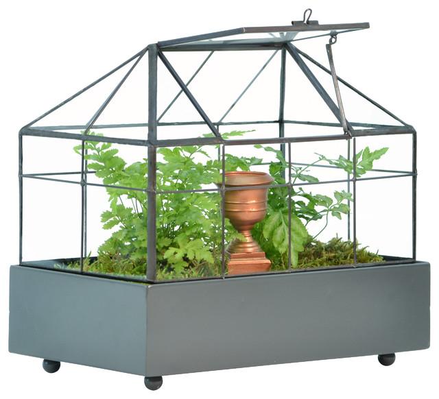 H Potter Terrarium for Plants traditional-terrariums
