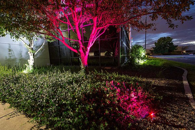 LED Outdoor and Landscape Lighting contemporary-landscape