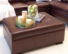 Elements Chateau Top Grain Leather Storage Ottoman - Mahogany modern-display-and-wall-shelves