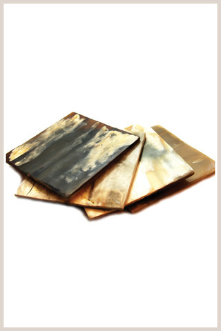 Square Horn Coaster Set coasters