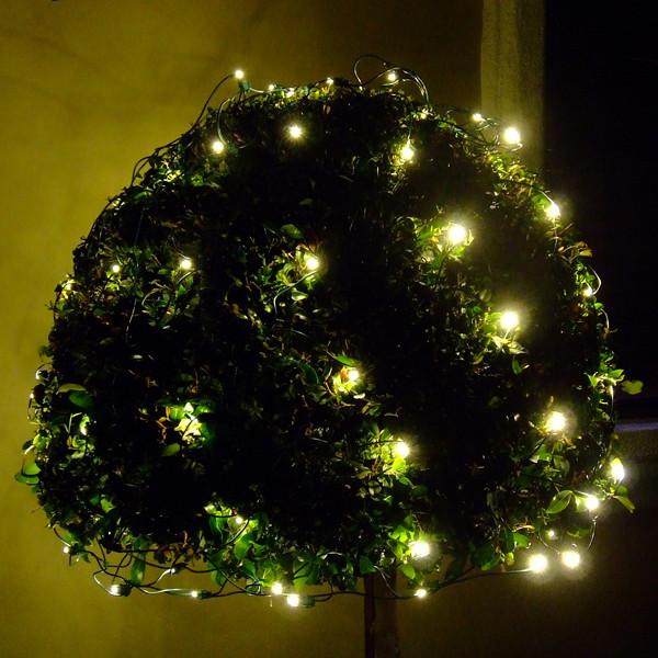 LED Christmas Net Lights - Holiday Lighting - by EnvironmentalLights ...