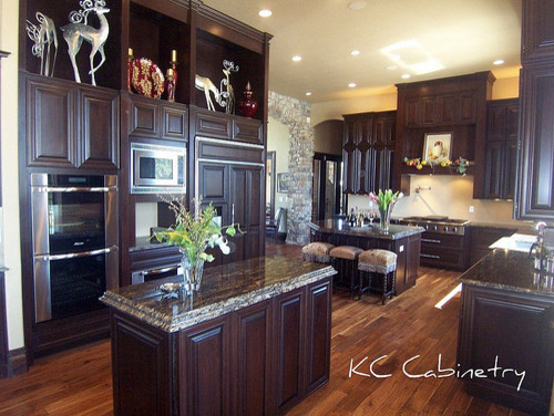 Highlands Ranch CO traditional kitchen