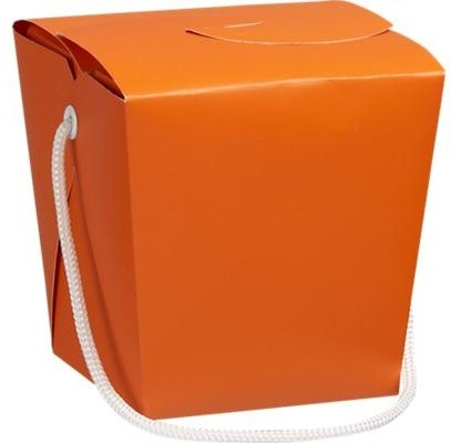 Orange-Magenta Take-Out Box modern food containers and storage