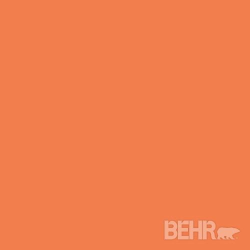 Behr Paint Color Harvest Pumpkin 220b 6 Modern Paint