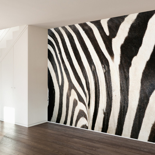 ... Zebra Print Wall Mural Decal Contemporary Wall Decals ... Part 68