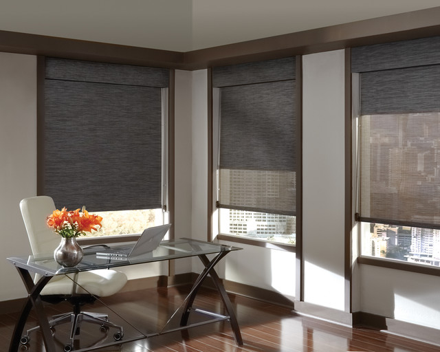 Hunter Douglas Window Fashions modern-window-blinds