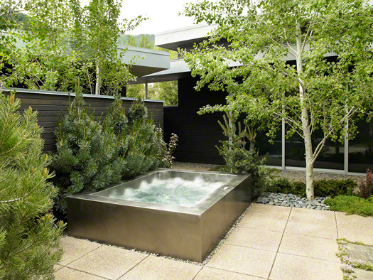 Stainless steel luxury sustainable custom spa contemporary-swimming-pools-and-spas