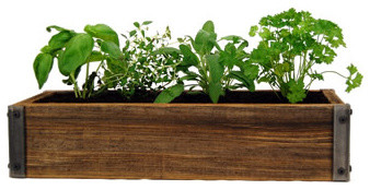 Rustic Wood Planter Box With Culinary Herb Garden