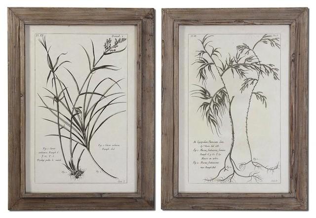 Uttermost Natures Harmony Framed Art Set/2 modern-artwork