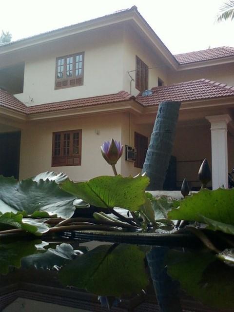 Pond & My Home