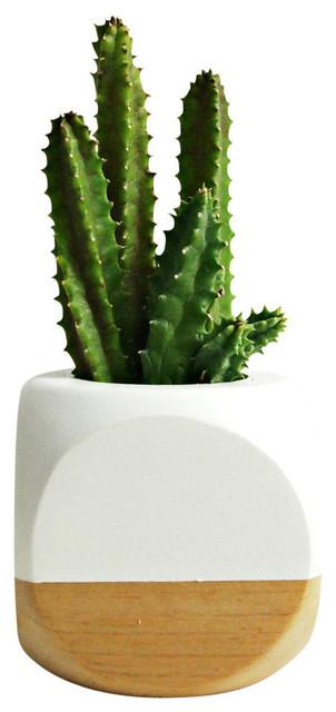 Geometric succulent cactus planter white contemporary for Wooden cactus planter