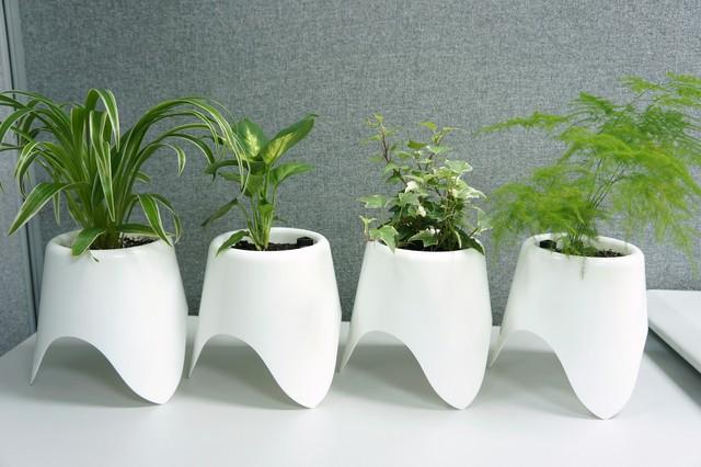 Baby Tripot Self Watering Planter Contemporary Indoor