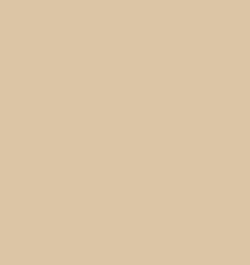 Squire Hill Buff 1068 By Benjamin Moore Paint By