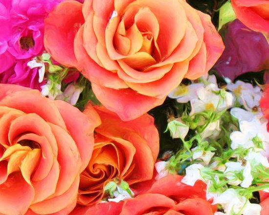 Salmon Roses Closeup, enhanced - Salmon Roses Closeup photograph by Ed Swonger
