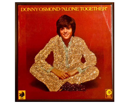 "Glittered Donny Osmond Alone Again Album - Glittered record album. Album is framed in a black 12x12"" square frame with front and back cover and clips holding the record in place on the back. Album covers are original vintage covers."