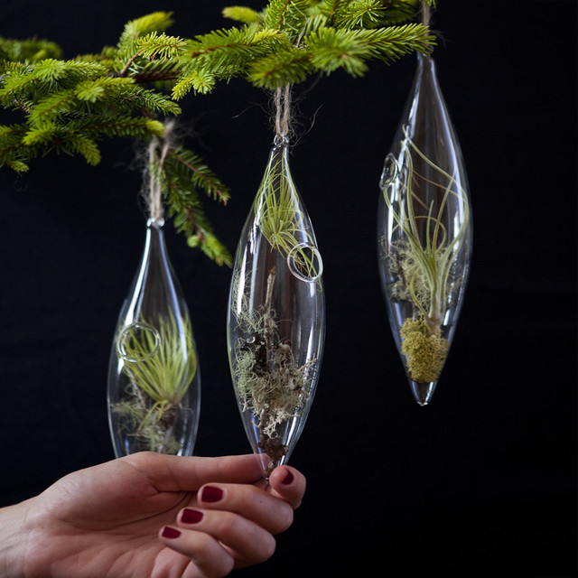 Aerium Ornament christmas-ornaments