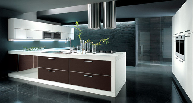 Arrital italian kitchens contemporary kitchen chicago by gene sokol euroluxe interiors - Kitchen cabinet design italian ...