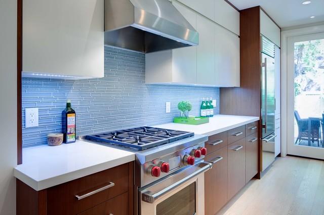 Boston modern-kitchen