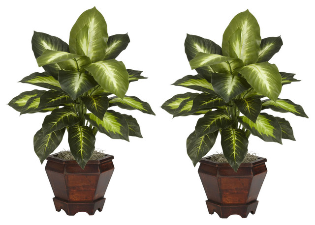Nearly Natural Dieffenbachia with Wood Vase Silk Plant (Set of 2) - Golden traditional-artificial-flowers