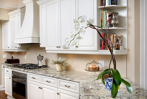 Persian Pearl Granite countertop