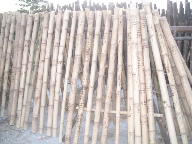 bamboo poles tropical-outdoor-products